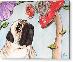 Dog Treat Acrylic Print