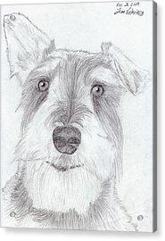 Doggie Acrylic Print