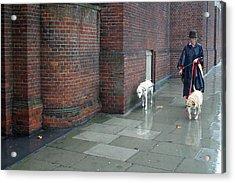 Doggie  Strolling 2 Acrylic Print by Jez C Self