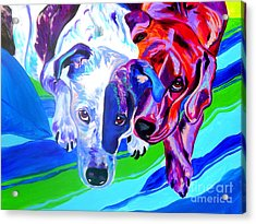 Dogs - Tango And Marley Acrylic Print by Alicia VanNoy Call