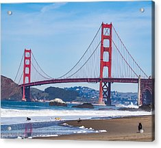 Dogs At The Golden Gate Bridge Acrylic Print