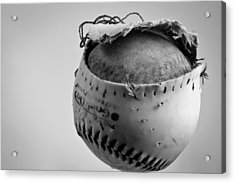Dog's Ball Acrylic Print by Bob Orsillo