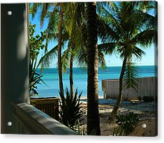 Dog's Beach Key West Fl Acrylic Print by Susanne Van Hulst