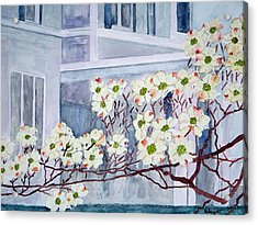 Dogwood Time In Oldtown Acrylic Print by Larry Wright