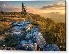 Monongahela National Forset Dolly Sods Wilderness Acrylic Print by Rick Dunnuck