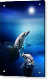 Dolphin Delight Acrylic Print by Julie L Hoddinott