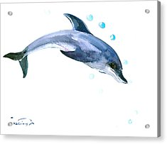 Dolphin Acrylic Print by Suren Nersisyan
