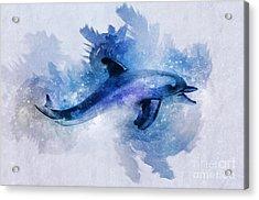 Dolphins Freedom Acrylic Print