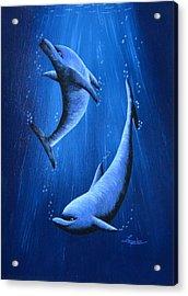Dolphins Acrylic Print by Roberta Landers