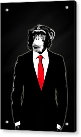 Domesticated Monkey Acrylic Print by Nicklas Gustafsson
