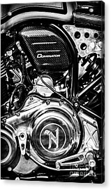 Acrylic Print featuring the photograph Dominator by Tim Gainey