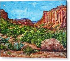 Dominguez Canyon Acrylic Print