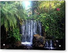 Acrylic Print featuring the photograph Dominica by Denise Moore
