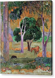 Dominican Landscape Acrylic Print by Paul Gauguin