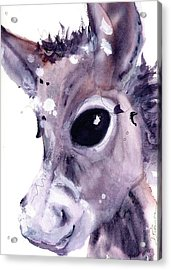 Acrylic Print featuring the painting Donkey by Dawn Derman