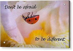 Don't Be Afraid Acrylic Print