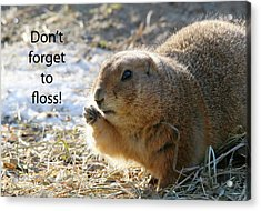 Dont Forget To Floss Acrylic Print by Karol Livote