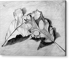 Acrylic Print featuring the drawing Don't Leaf Me by Jean Haynes