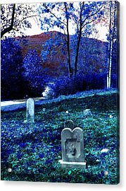 Dont Point Acrylic Print by Lee M Plate