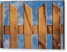 Acrylic Print featuring the photograph Don't Take A Fence by Paul Wear