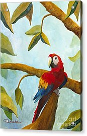 Dont Worry Be Happy Acrylic Print by Phyllis Howard