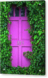 Door 229 Acrylic Print by Darren White