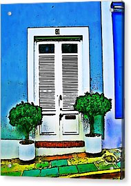 Door 61 Acrylic Print by Perry Webster