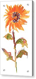 Door Keeper Sunflower Watercolor Painting By Kmcelwaine Acrylic Print