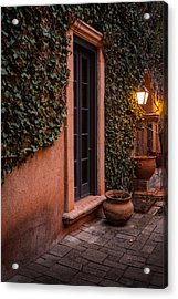 Doorway Through The Vines Acrylic Print