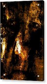Dorian Gray Acrylic Print by Ken Walker