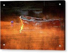 Dory In Orange Mist Acrylic Print
