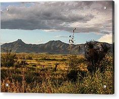 Dos Cabezas Grasslands At Dusk Acrylic Print
