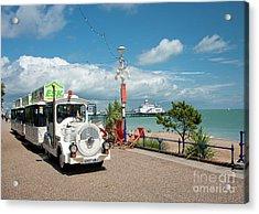 Dotty Train Eastbourne Uk Acrylic Print by Donald Davis