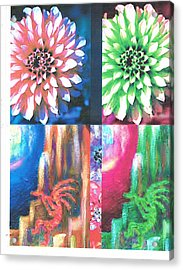 Double Color Visions Acrylic Print by Anne-Elizabeth Whiteway