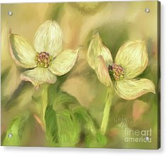 Acrylic Print featuring the digital art Double Dogwood Blossoms In Evening Light by Lois Bryan