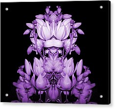 Double Purple Acrylic Print by Evelyn Patrick