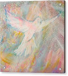 Dove Detail From Immaculate Conception Acrylic Print