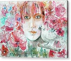 Dove Acrylic Print by Jasna Dragun