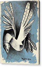 Dove  Acrylic Print by Mark M Mellon