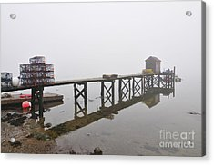 Dover Point Acrylic Print by Catherine Reusch Daley