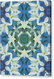 Doves Of Peace Acrylic Print