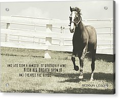 Down And Back Quote Acrylic Print by JAMART Photography