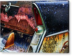 Down In The Dumps 10 Acrylic Print by Bob Christopher