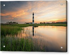 Acrylic Print featuring the photograph Down In The Swamp by Bernard Chen