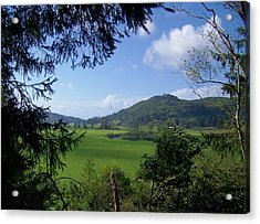 Acrylic Print featuring the photograph Down In The Valley by Angi Parks