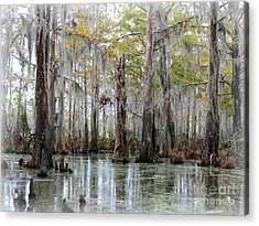 Down On The Bayou - Digital Painting Acrylic Print by Carol Groenen
