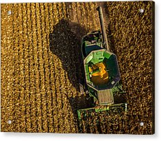 Down On The Combine Acrylic Print