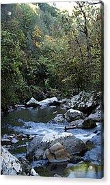 Down Stream Acrylic Print by Bj Hodges