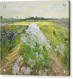 Down The Line Acrylic Print by Timothy Easton