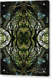 Down The Rabbit Hole Acrylic Print